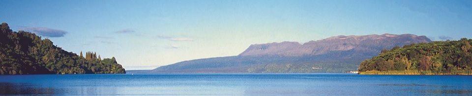 Counselling Rotorua